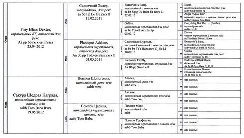 Таблица кликабельна