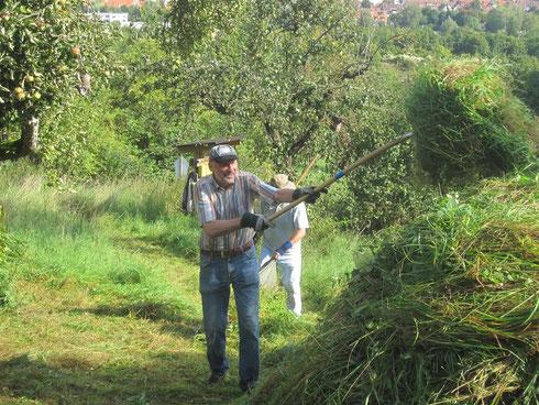 Viel Gras und groß Haufen Foto: E.Selig