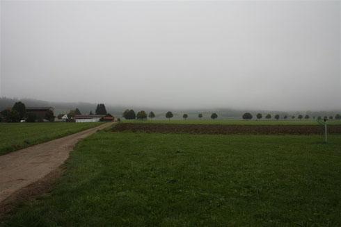 Der Kraterrand im Nebel