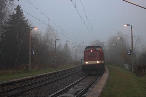 110 101 und 52 8131 am Zugschluss mit einem Sonderzug von Nossen nach Neuhausen in Kleinschirma