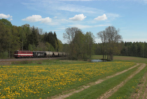 142 110 und 142 145 der EBS mit Getreidezug kurz vor Klingenberg