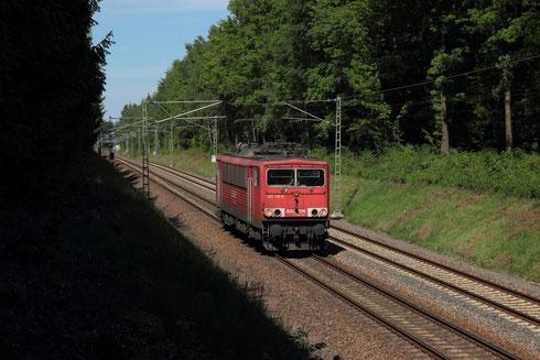 155 110 Lz im Freiberger Hospitalwald