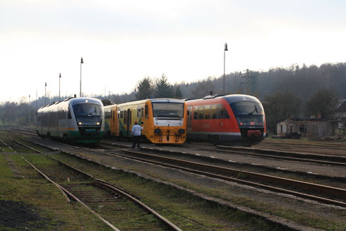 VGB 642 und ex DB Regio 642 Treffen in Teichstadt( Rybniste)