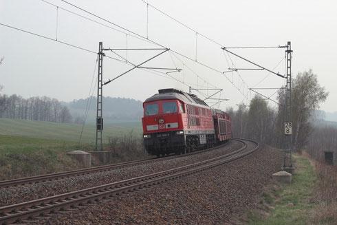 233 698 mit einem Sonderleerautozug von Glauchau nach Tschechien