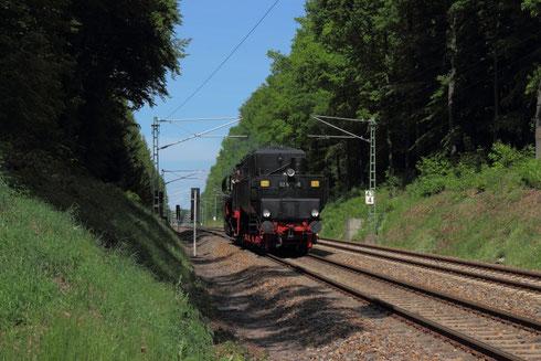 52 8131 im Hospitalwald von Freiberg