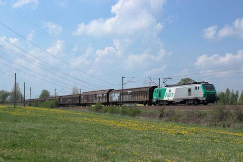 ITL 37 026 mit Papierzug nach DF bei Colmnitz