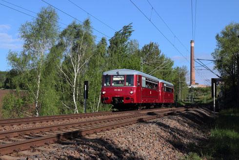 """2 """"Ferkeltaxen"""" bei Freiberg auf dem Weg nach Löbau"""