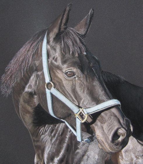 Rubina - Pastellkreide 25 x 30 cm