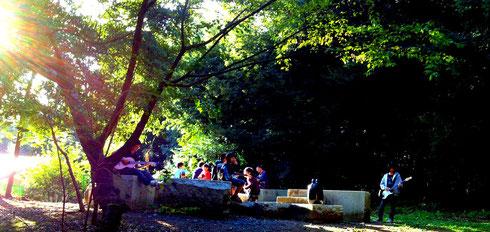 森のオンガク合宿2013