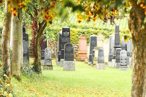 Jüdischer Friedhof in Bodenheim