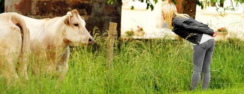 Dialog mit den Kühen