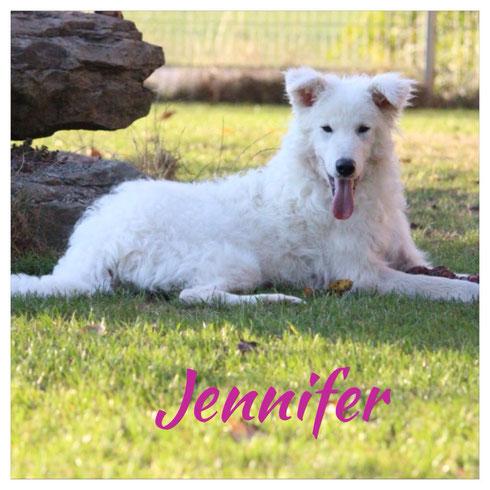Jennifer ist zu 2 Hundekumpels nach Döhlau (bei Hof) gezogen.