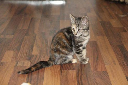 Thelma lebt weiterhin in Wuppertal - zusammen mit Louise.