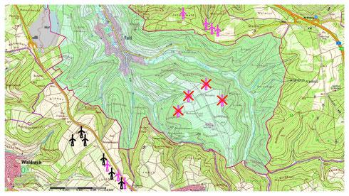 Vorhandene (schwarz), geplante (pink) und gestoppte (rot) Windenergieanlagen rund um Fell (Kartenquelle: LANIS-RLP)