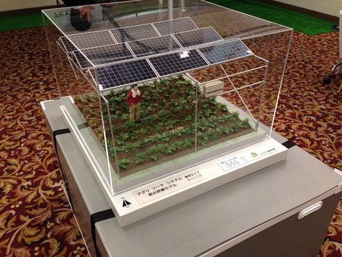 アグリソーラー(ソーラーシェアリング)の1/30モデルも展示中