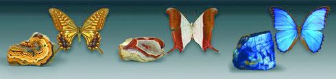 """3 Prachtstücke aus der Sammlung """"Fiegende Juwelen"""""""