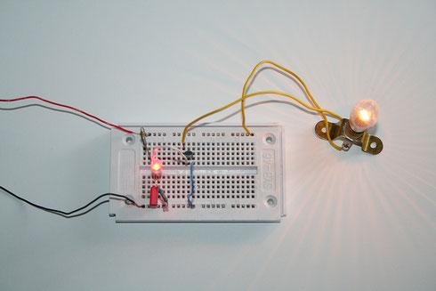 Die Blink-LED steuert über einen Transistor die Glühlampe an