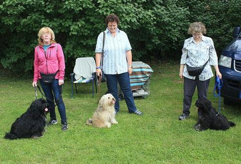 Bommel, Sally und Yeshi mit Zweibeinern