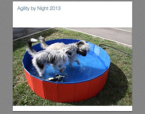 Unsere Berger Kinder ;-)Maike's Ketty und meine kleine Jossy im Pool :-)