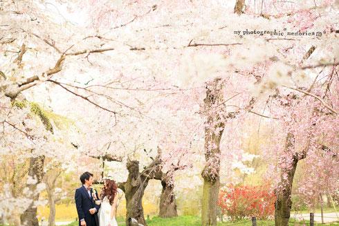 結婚式 前撮り 京都