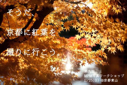 11月の写真ワークショップ
