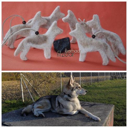 Tamaskan; Husky; Wolf;