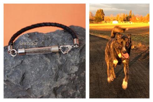 Tierhaarschmuck; Geschenke Hundefreunde
