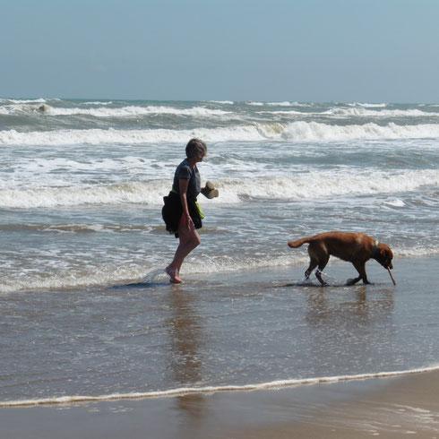 Mit Odin am Strand bei Gruissan 3