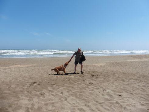 Mit Odin am Strand bei Gruissan 1