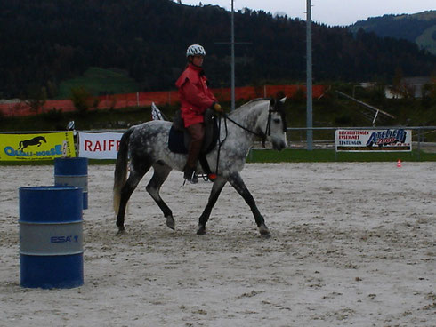An der Horseathlon-Schweizermeisterschaft