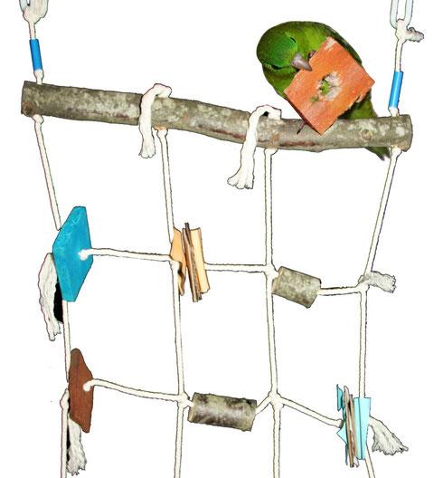Filet de jeux perruches et perroquets - Ecorces de pin leclerc ...