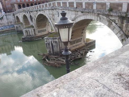 Che bello ponte Sisto di mattina, viene quasi voglia di starsene qui tutto il giorno a guardare le paperelle che sguazzano in acqua...