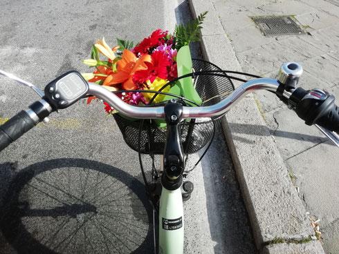 Chiederò al presidente del consiglio di istituire una legge speciale che impone a chi ha una bici col cestino di portare sempre fiori freschi, che dite?