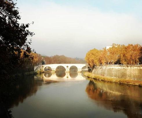 Un pochino di foschia, gli alberi e ponte Sisto che si riflettono nelle acque del Tevere, e la giornata sembra più lieve