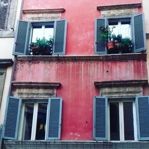 Quanto mi piacciono le case dagli intonaci rossi...meglio se con qualche piantina alla finestra, come in via dei Banchi Vecchi