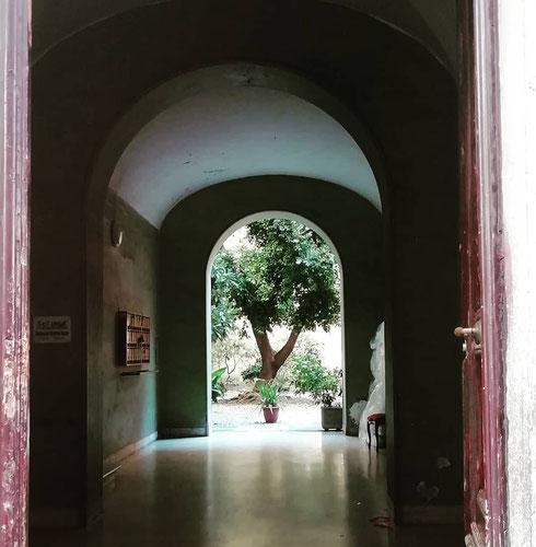 Via Enrico Cialdini è una stradina tra la stazione Termini e l'Acquario Romano che nasconde bellissimi e insospettabili cortili
