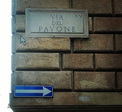 Tra corso Vittorio Emanuele e via dei Banchi Vecchi fa la ruota la piccola via del Pavone...non ci sono notizie certe sull'origine del nome ma forse, come spesso accade, il pennuto in questione era raffigurato da qualche parte per la strada...