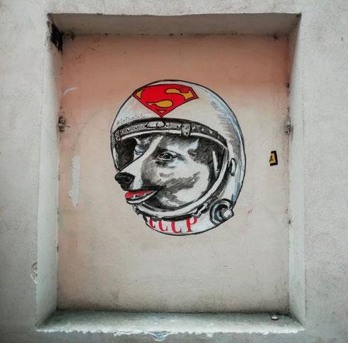 Come in una favola (ma stavolta senza lieto fine) la cagnolina Laika fu la prima dalla Terra a raggiungere lo spazio. Lediesis hanno scelto per lei il palcoscenico di Campo de' Fiori, per ricordarci di avere rispetto di tutte le forme viventi della Terra. Comprese le cagnette astronaute