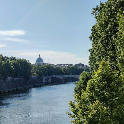 Passare su ponte Sisto in un pomeriggio assolato può voler dire metterci delle ore.  Perché tra il panorama, le paperelle che nuotano lungo il fiume, l'azzurro del cielo che si riflette nel Tevere, non si vorrebbe mai andar via