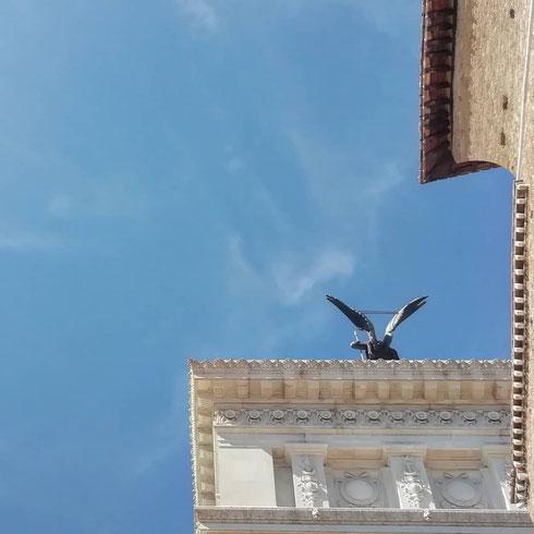Tra la chiesa dell'Aracoeli e il Vittoriano qualcuno è pronto a spiccare il volo sul cielo di Roma