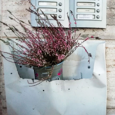 Mettete dei fiori nelle vostre cassette postali