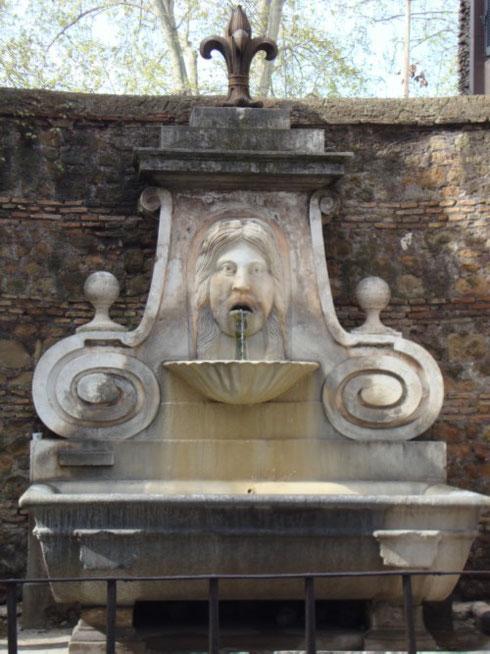 ...può capitare di assumere la stessa espressione un po' stupita del mascherone della fontana di via Giulia quando ci si lascia conquistare dalla bellezza di questa strada, vero salotto della Roma del Cinquecento.