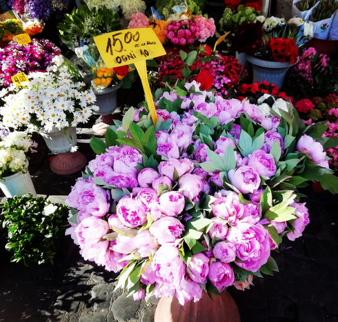 Può essere rubricata come gita fuori porta guardare tutto il giorno i fiori delle bancarelle in Campo de' Fiori? E voi dove ve ne andate oggi, tempo permettendo?