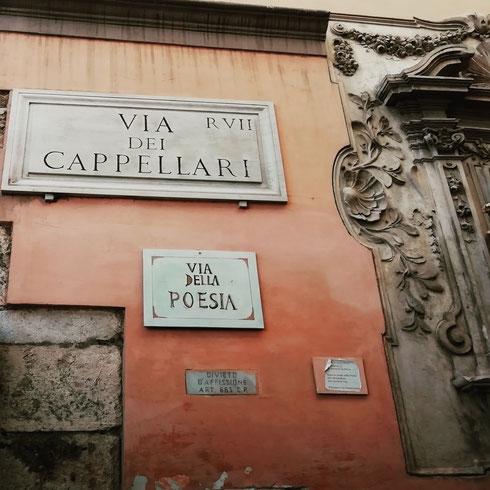 Via dei Cappellari prende il nome dai fabbricanti di cappelli che si trovavano attorno a Campo de' Fiori, ma oggi è anche la via della poesia...sarà anche perché Pietro Metastasio, compositore, poeta e innovatore del melodramma, nacque al civico 30 nel 1698