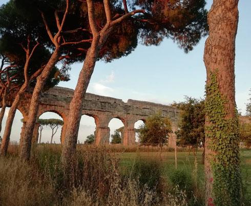 Il parco degli Acquedotti deve il suo nome agli imponenti resti di cinque degli acquedotti che servivano la città antica, a questi si aggiunge l'acqua Felice alla fine del Cinquecento