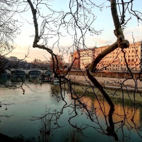 Nelle fredde mattine d'inverno il Tevere dà il meglio di sé