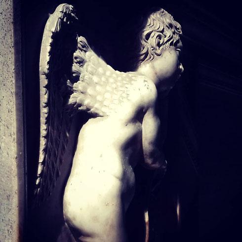 Sembra quasi che il primo sole del mattino stia svegliando l'angioletto che sorveglia la tomba del cardinale Bernardino Lonati, opera della bottega di Andrea Bregno