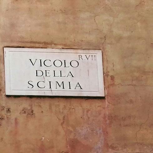 Molte strade romane hanno nomi davvero bizzarri, come questa piccola traversa di via Giulia, che prende il nome dall'osteria della Scimmia, che un tempo si trovava da queste parti