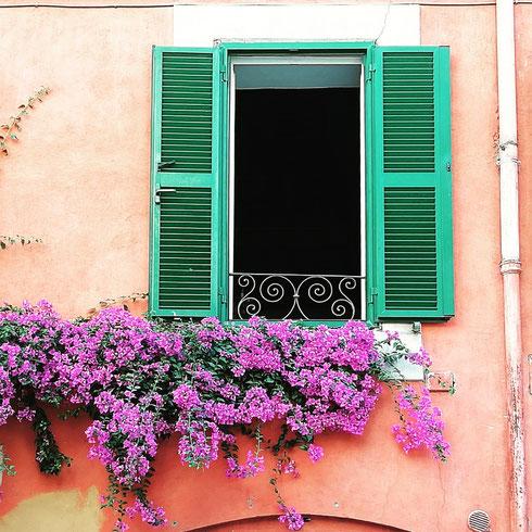 Le finestre e le strade del rione Monti sono tutte in fiore...e io le ho fotografate tutte