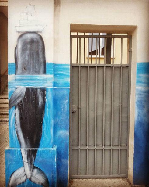 E dalle acque emerge una balenottera. Che non siano le acque profonde, ma un muro di via fra' Albenzio fa poca differenza...non credete?
